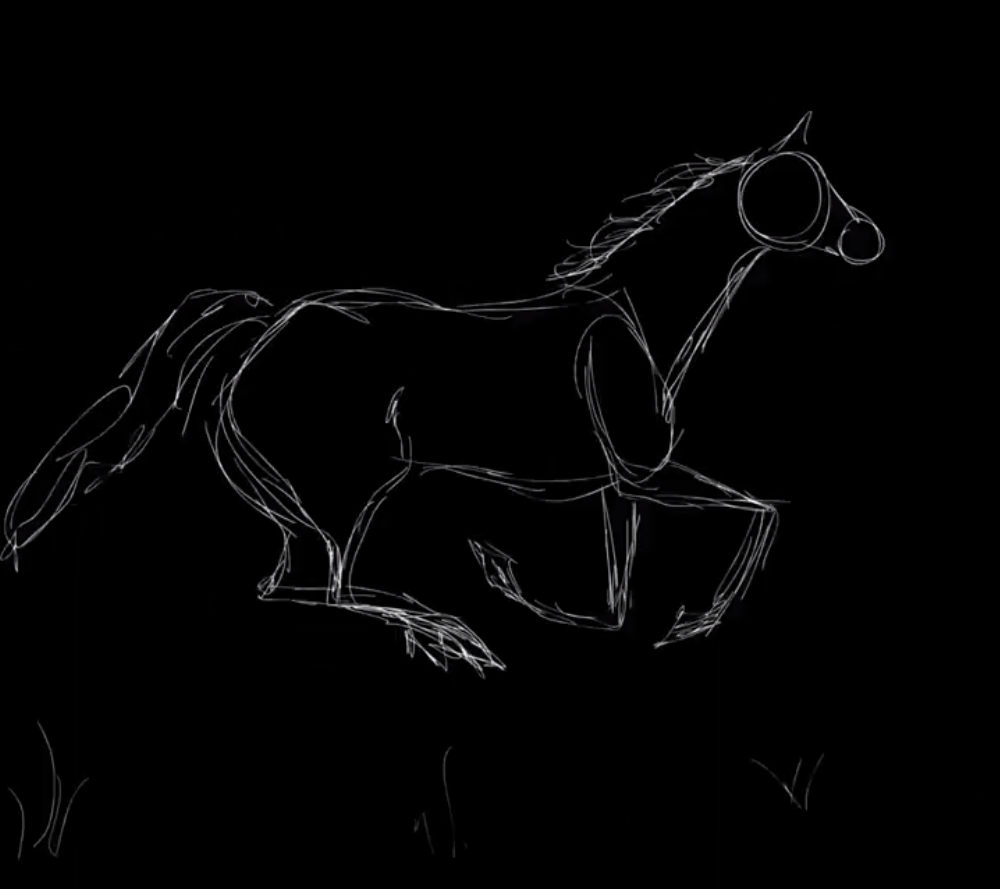 Horse Galloping Cycle Animation